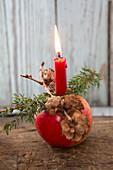 Weihnachtsapfel mit Kerze, Lärchenzapfenzweig und Wacholderzweig