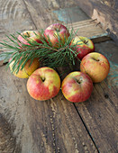 Apples stuck on wooden skewers to make a festive wreath