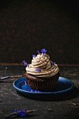 Chocolate muffin with coffee butter cream and edible lavender flowers over dark surface