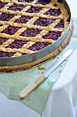 Cranberry pie with a pastry lattice