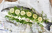 Fresh salmon with herbs and lemon slices on a sheet of newspaper