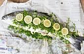 Frischer Lachs mit Kräutern und Zitronenscheiben auf Zeitungspapier
