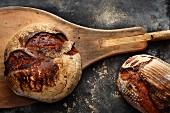 Brot auf Brotschieber (Aufsicht)