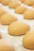 Dough pieces for bread rolls