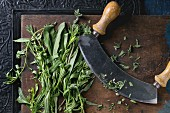 Bundle of fresh Italian herbs rosemary, oregano and sage with vintage herb cutter