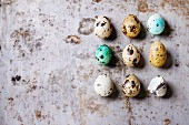 Decor whole and broken colorful Easter quail eggs standing in row rusty metaltexture background
