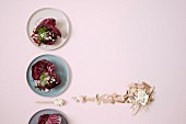 Beetroot tartar in radicchio leaves with radishes and cheese