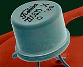 Small transistor on a circuit board, SEM