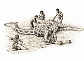 Homo ergaster feeding on a giraffe
