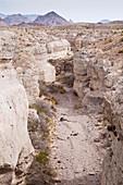 Tuff canyon, Texas, USA