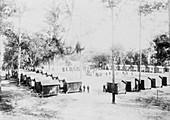 Yellow fever camp, USA, 1888
