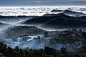 Mist-shrouded mountain valleys, India