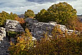 Eroded limestone pinnacles
