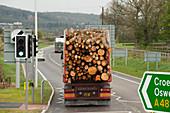 Lorry load of logs, UK