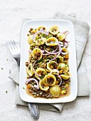 Lentil salad with orecchiette and red onions