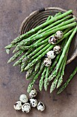Green asparagus and quail's eggs