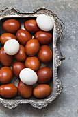 White and brown eggs in a silver tray