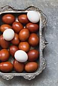 weiße und braun gefärbte Eier in Silberschale