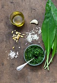 Ramsons (wild garlic) pesto with ingredients