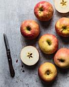 Frische rot-gelbe Äpfel mit Wassertropfen