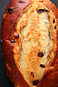 Sweet yeast bread with cranberries and chocolate chips (close-up)