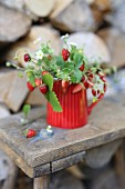 Twigs strawberries in a red jug on a wood stool