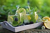 Zitronenwasser mit Heidelbeeren und Minze im Garten