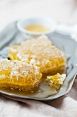 Honey with honeycomb (close up)