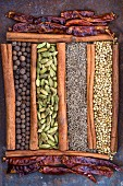 Different spices arranged artistically
