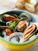 Coconut mussel stew