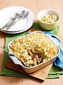 Pasta bake with tuna and morel sauce
