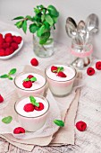 Vanilla yoghurt and raspberry yoghurt with fresh raspberries and mint