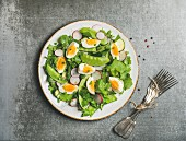 Healthy spring green salad with radish, boiled egg, arugula, green pea and mint in white plate