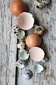 Zerbrochene Eierschalen auf Holzuntergrund