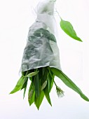 A bouquet of wild garlic wrapped in paper