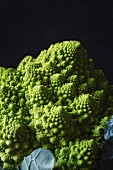 Romanesco broccoli (close-up)
