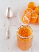 Homemade bitter orange marmalade (Italy)