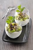 Weisses Schokoladenmousse mit Kiwi und Minze