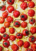 OVEN ROASTED GRAPE TOMATOES WITH GARLIC Oven roasted grape tomatoes with garlic