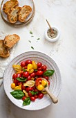 Tomato basil salad with toasted bread