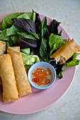 Fried spring rolls (Vietnam)