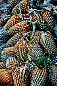 Pineapples at a market (Sri Lanka)
