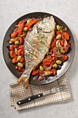 Grilled dorade with tomatoes and olives