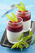 Coconut milk panna cotta with raspberry coulis and lemon verbena