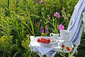 A tray with muesli, strawberries and a coffee cup on a garden chair