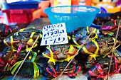 Tied crabs with a price tag at a fish market, Thailand
