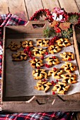 Christmas pinwheel cookies with red currant jam