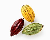 Yellow, red and green cocoa fruits against a white background