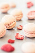 Dried strawberry macarons with white ganache