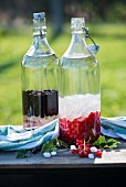 Ingredients for black and red currant liqueur with rock candy